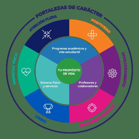 Ecosistema de Bienestar y Felicidad 2020