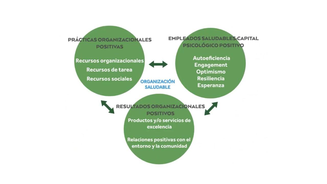 organizacionespositivas